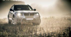 Scheinwerfer Nebel Auto BMW SUV Dämmerung Morgengrauen Lichtung Feld Wald