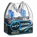 Gread Superwhite H7 Scheinwerferlampe
